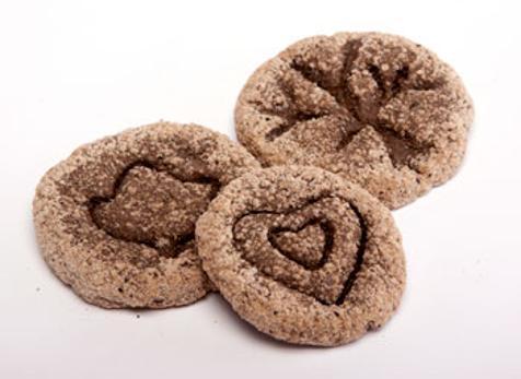 coffee-ground-fossils-